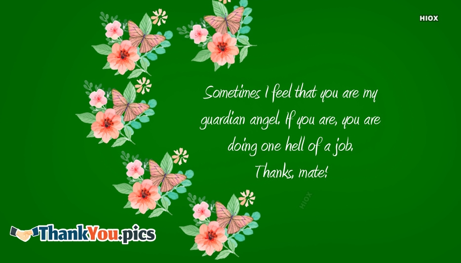 Sometimes I Feel That You Are My Guardian Angel. If You Are, You Are Doing One Hell Of A Job. Thanks, Mate