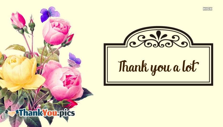 Thank You Images for Thank You A Lot