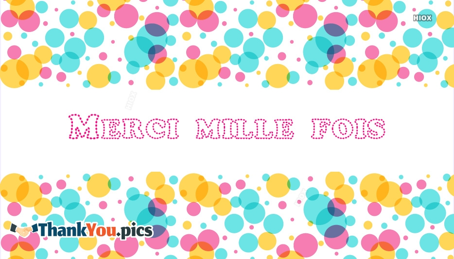 Thank You A Thousand Times In French | Merci Mille Fois
