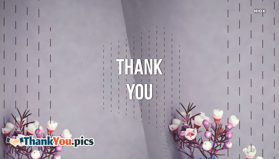 Appreciation Thank You Images