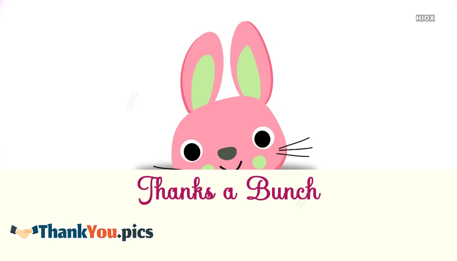 Thank You Bunny Images