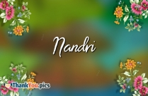 Nandri Photos