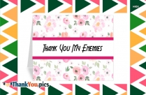 Thank You My Enemies
