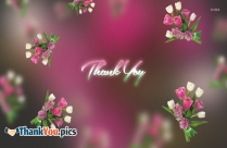 Thank You Quotes For Birthday Wishes