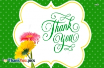 Thank You With Flowers Clipart Images